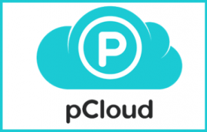 PCloud: Cloud Storage for Small Business